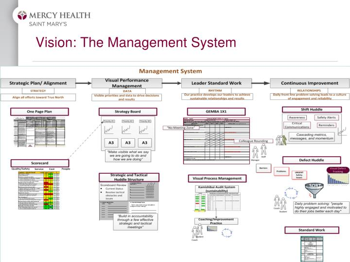 Vision: The Management System