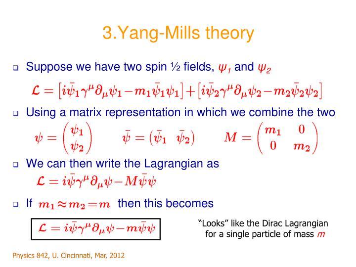 3.Yang-Mills theory