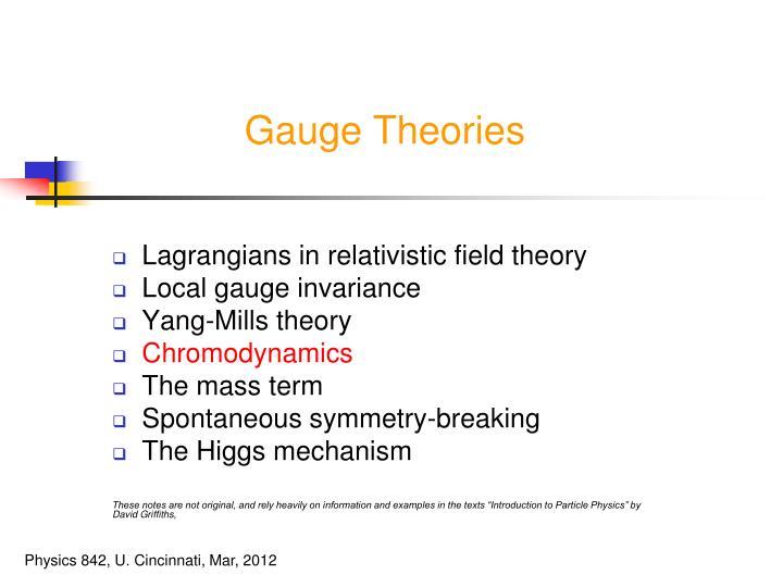 Gauge Theories