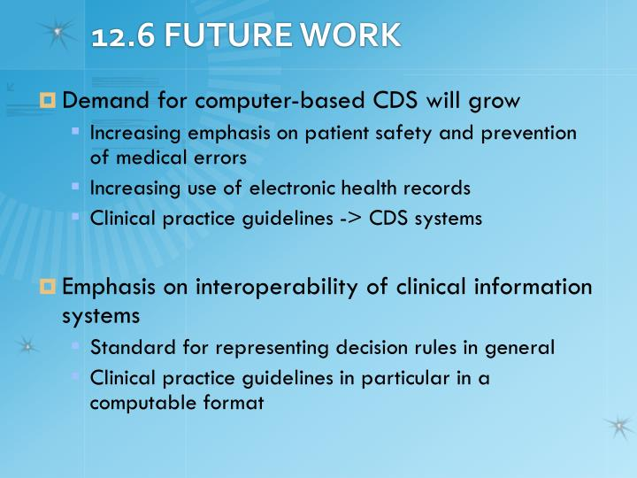 12.6 FUTURE WORK