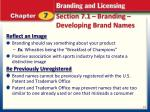 section 7 1 branding developing brand names2