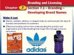 section 7 1 branding developing brand names3