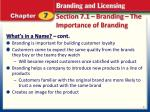 section 7 1 branding the importance of branding2