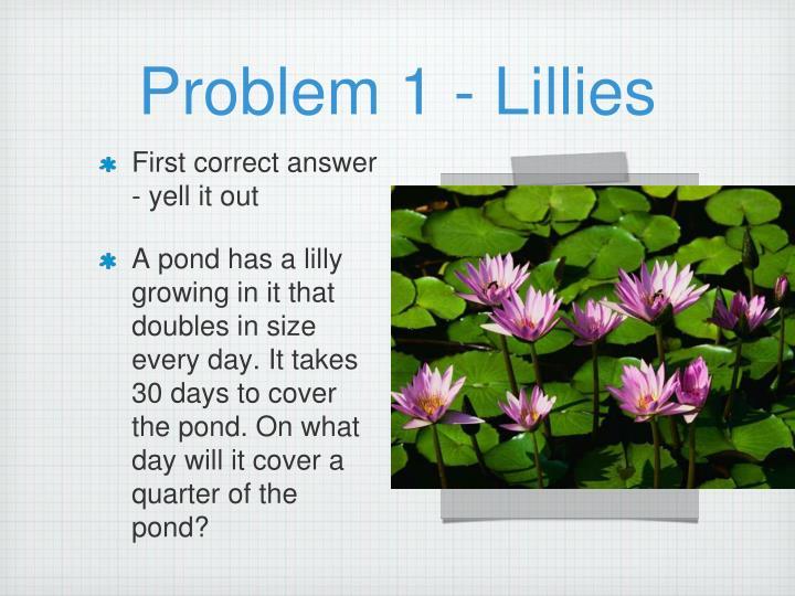 Problem 1 - Lillies