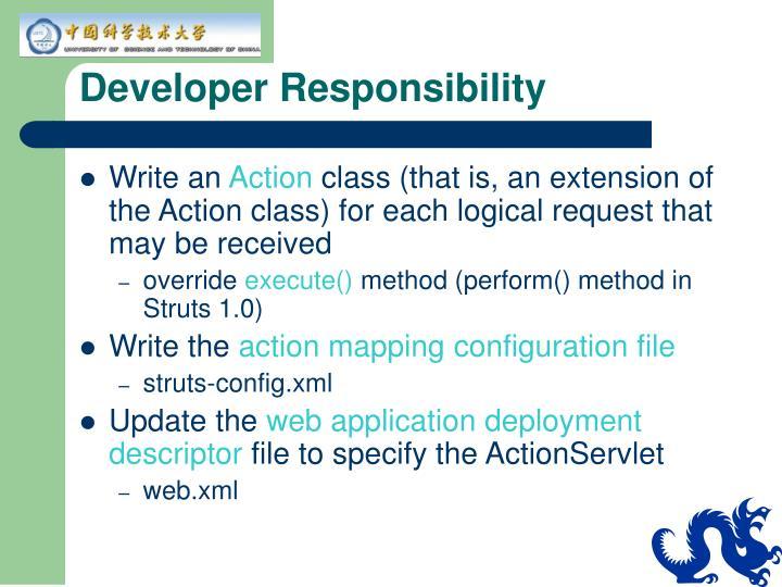 Developer Responsibility