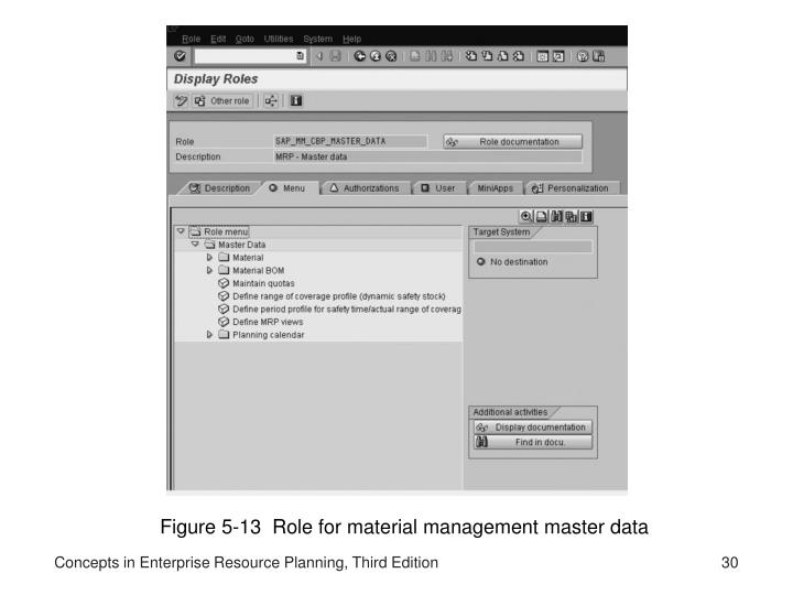 Figure 5-13  Role for material management master data
