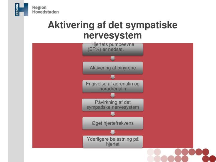 Aktivering af det sympatiske nervesystem