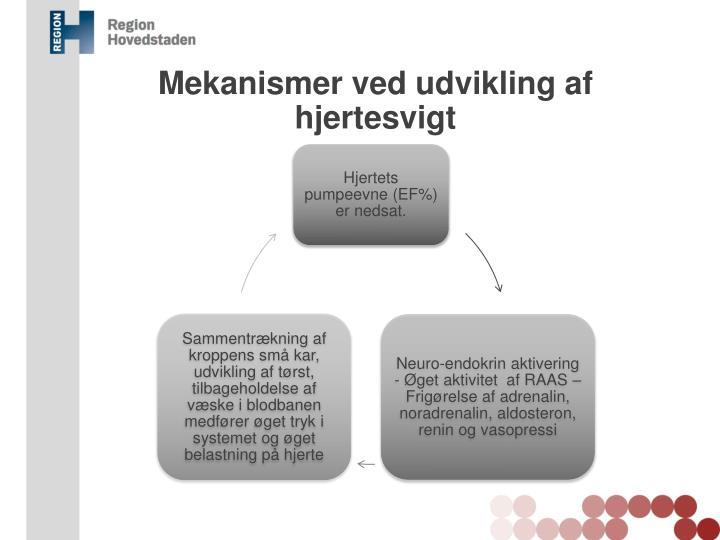 Mekanismer ved udvikling af hjertesvigt