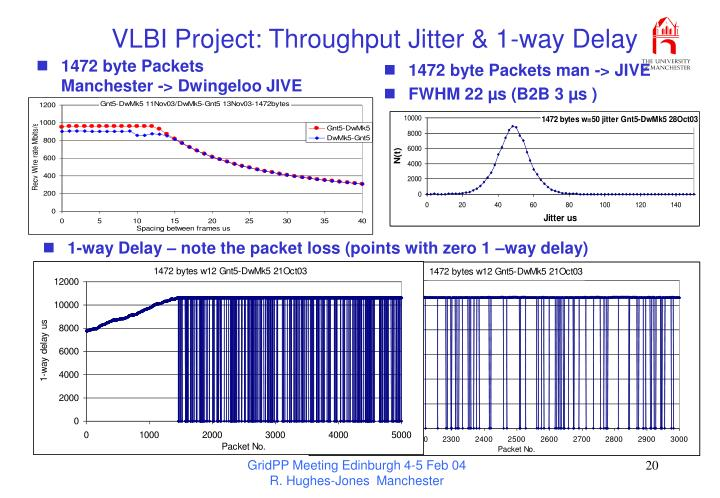 VLBI Project: Throughput Jitter & 1-way Delay