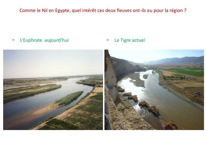 Comme le Nil en Egypte, quel intérêt ces deux fleuves ont-ils eu pour la région ?