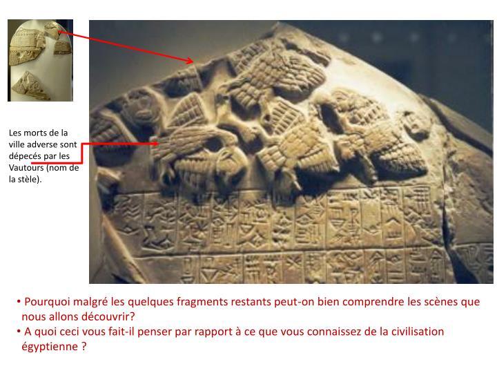 Les morts de la ville adverse sont dépecés par les Vautours (nom de la stèle).