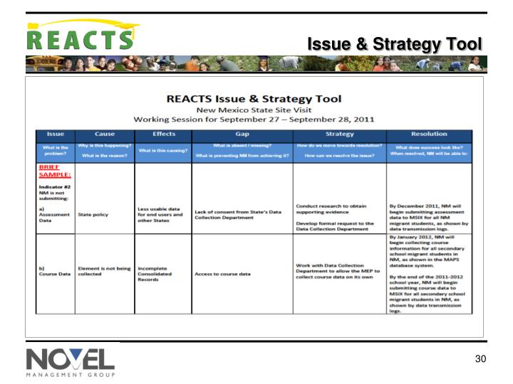 Issue & Strategy Tool