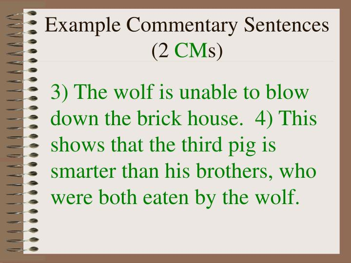 Example Commentary Sentences (2