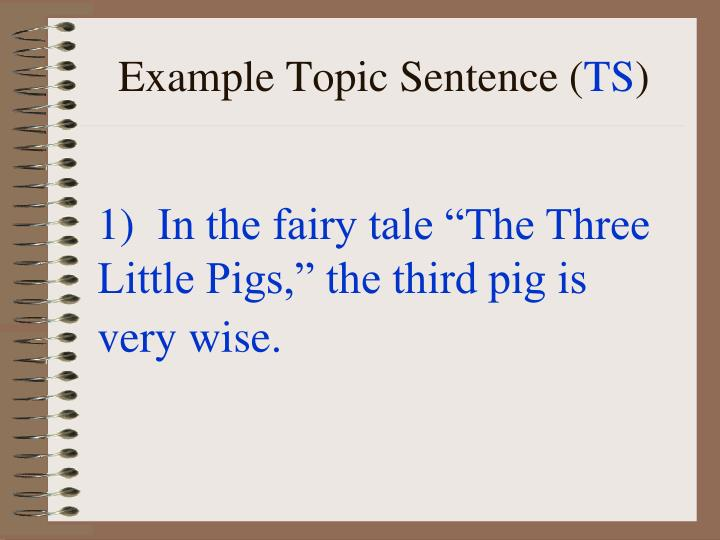 Example Topic Sentence (