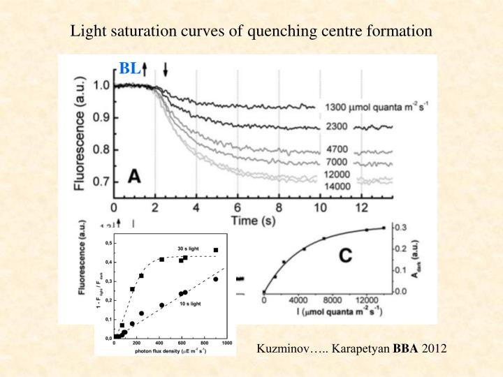 Light saturation curves of