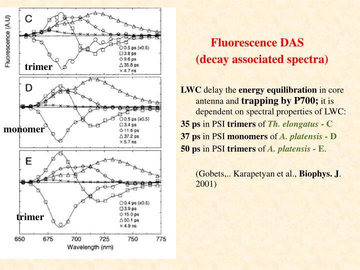 Fluorescence DAS