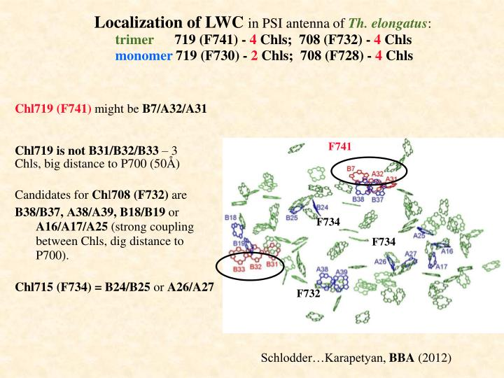 Localization of LWC