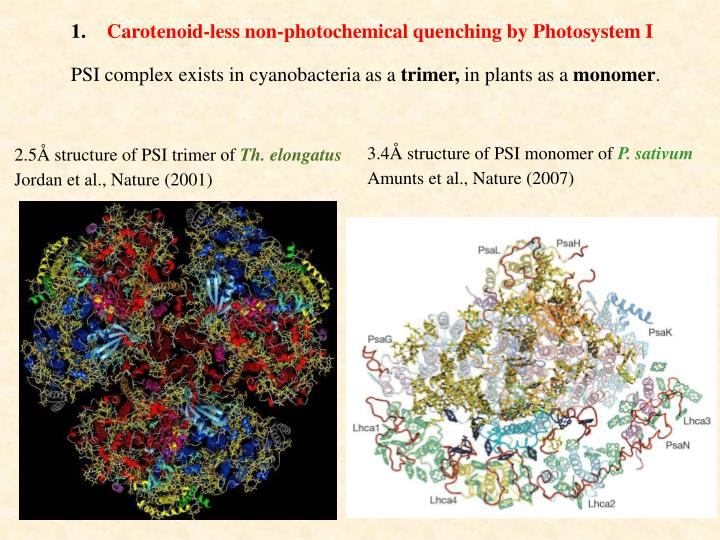 Carotenoid-less non-photochemical quenching by Photosystem I