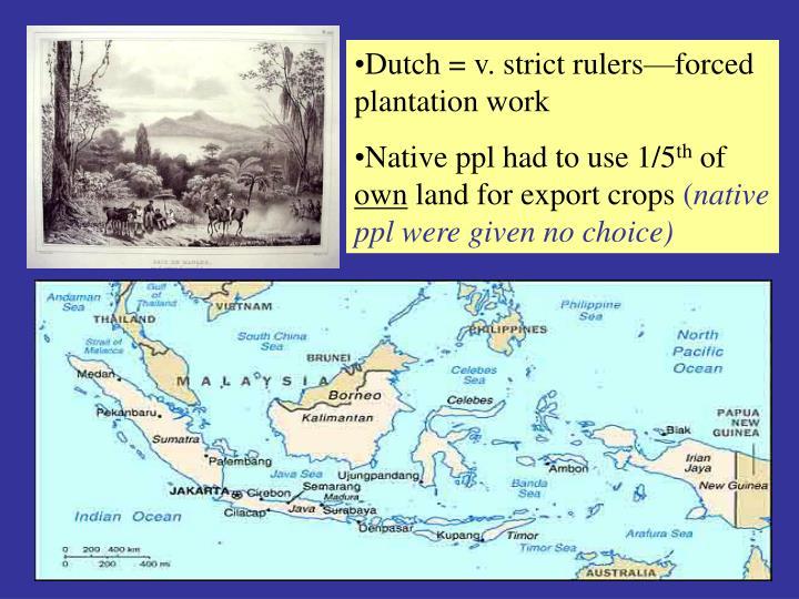 Dutch = v. strict rulers—forced plantation work