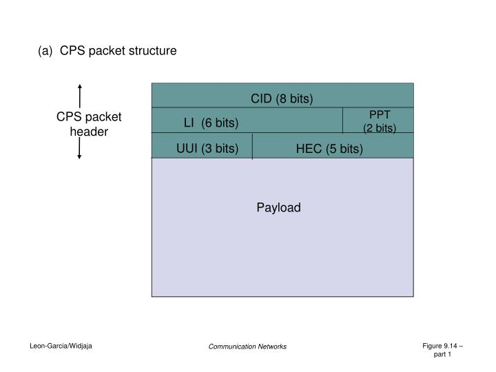 (a)  CPS packet structure
