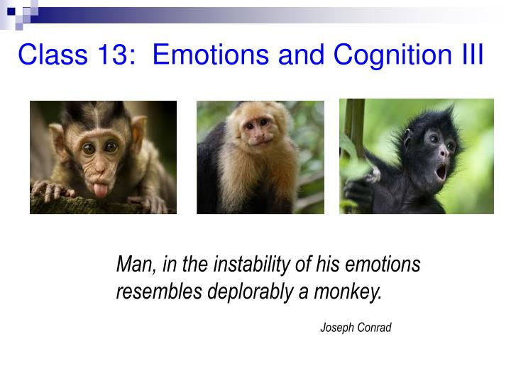 Class 13:  Emotions and Cognition III