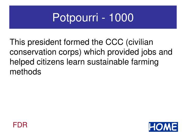 Potpourri - 1000