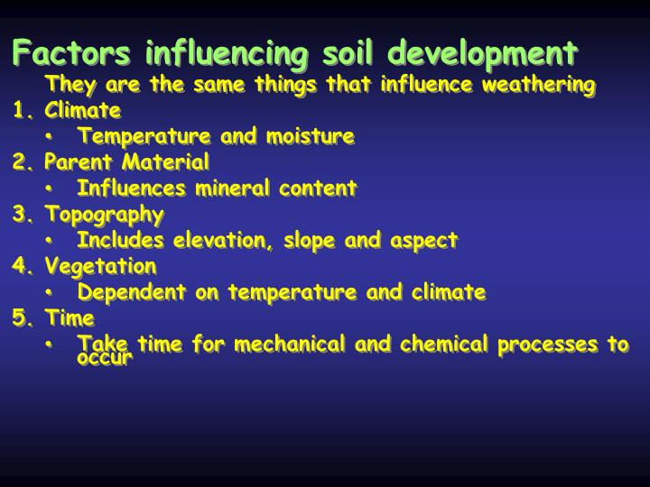 Factors influencing soil development