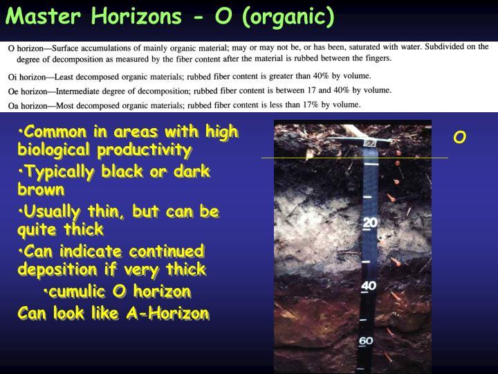 Master Horizons - O (organic)