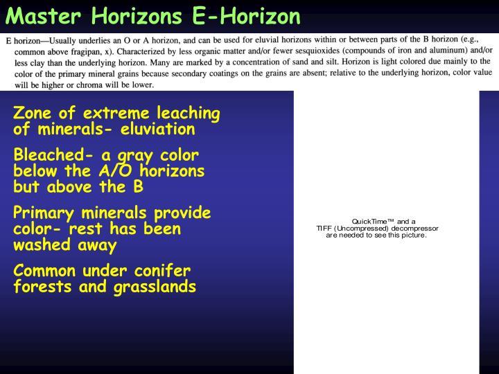 Master Horizons E-Horizon