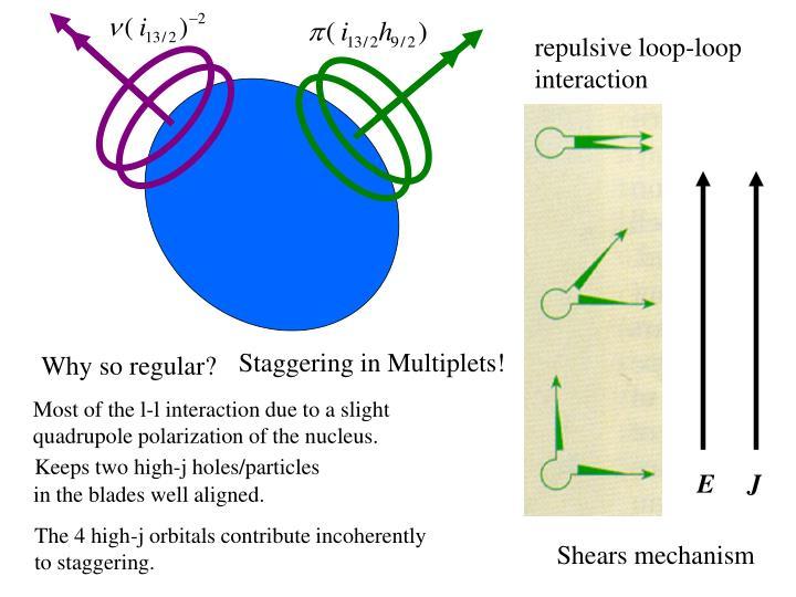 repulsive loop-loop