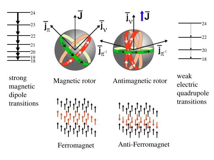 Anti-Ferromagnet