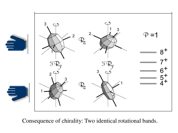 Consequence of chirality: Two identical rotational bands.