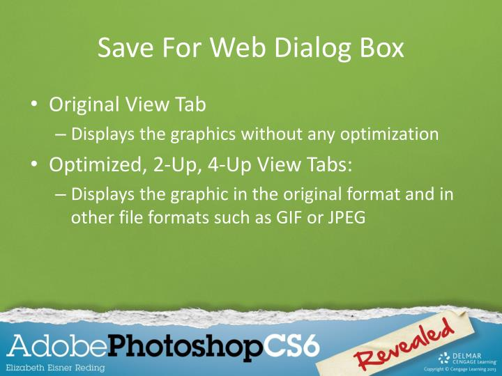 Save For Web Dialog Box