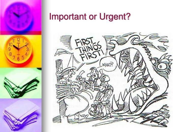 Important or Urgent?