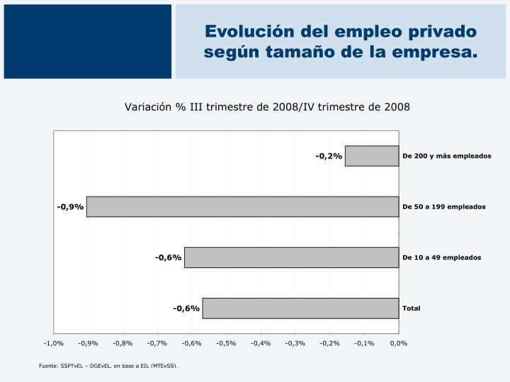 Evolución del empleo privado según tamaño de la empresa.