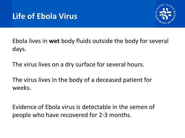 Life of Ebola Virus