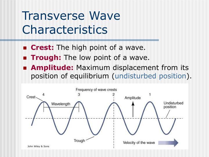 Transverse Wave Characteristics