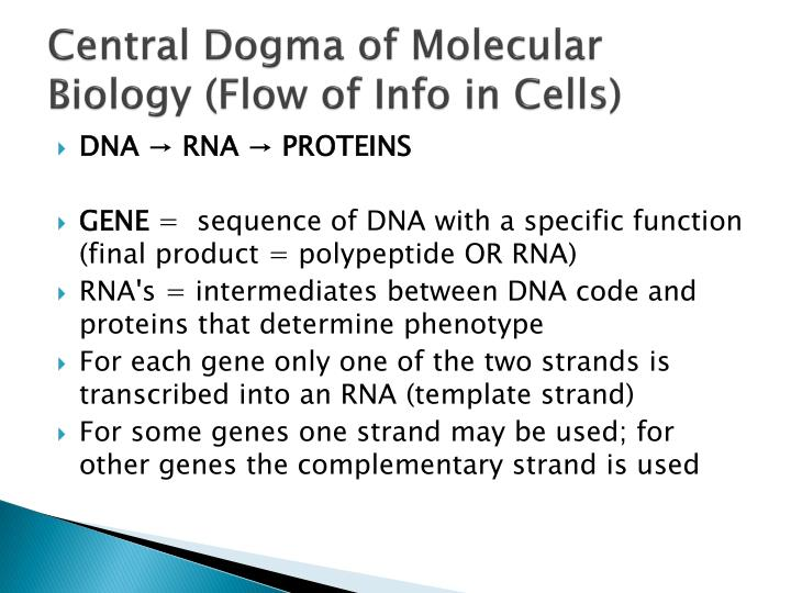 Central Dogma of Molecular Biology (Flow of Info in Cells)