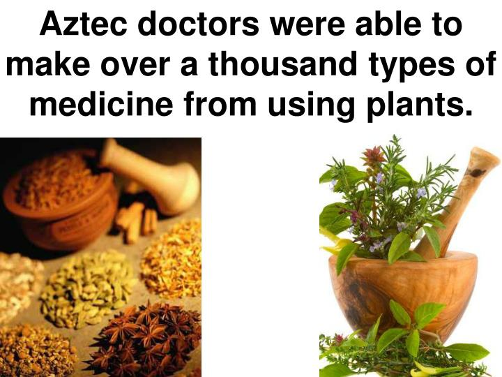Aztec doctors were able to make over a thousand types of medicine from using plants.