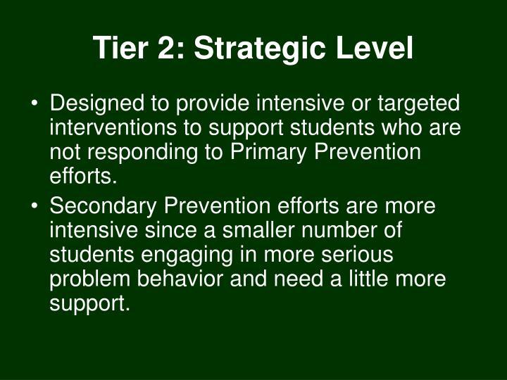 Tier 2: Strategic Level