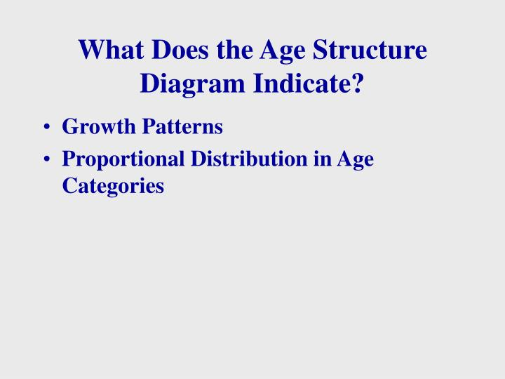 What Does the Age Structure Diagram Indicate?