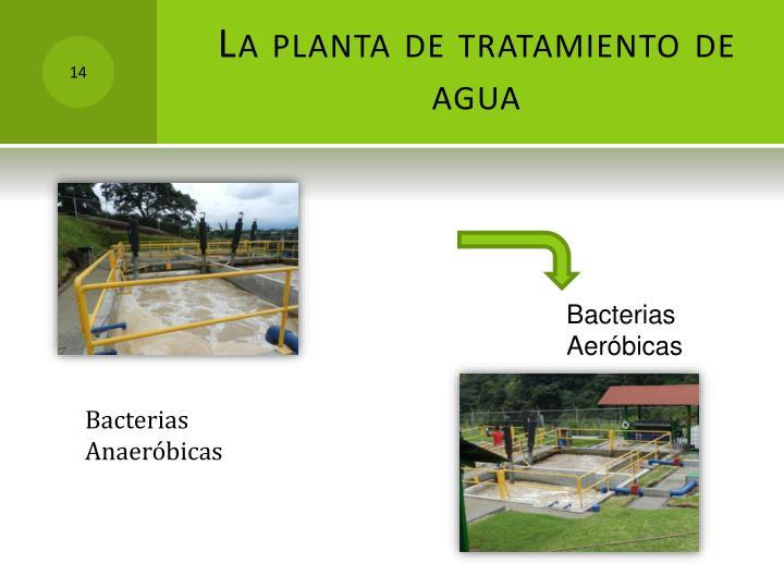 La planta de tratamiento de agua