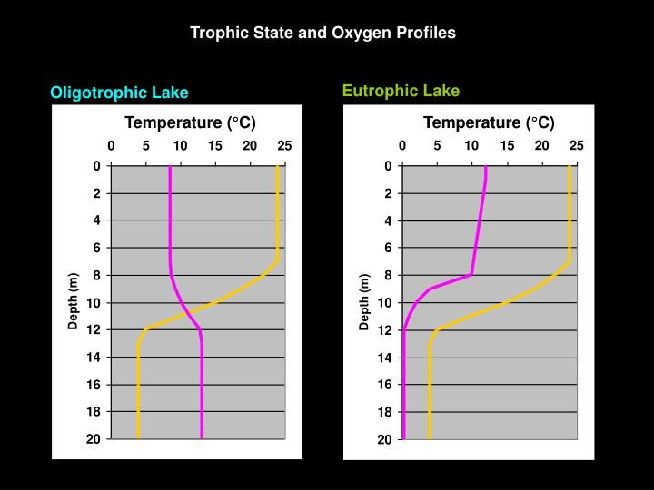 Trophic State and Oxygen Profiles