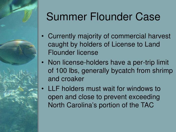 Summer Flounder Case