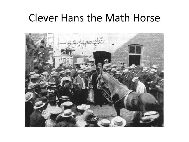 Clever Hans the Math Horse