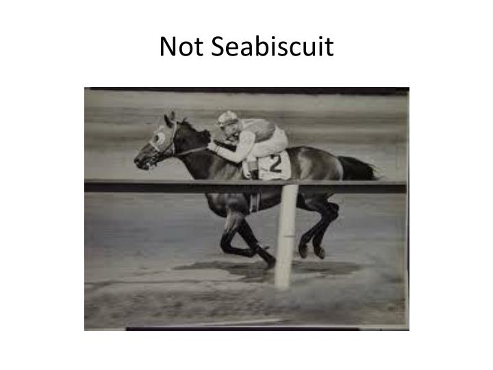 Not Seabiscuit