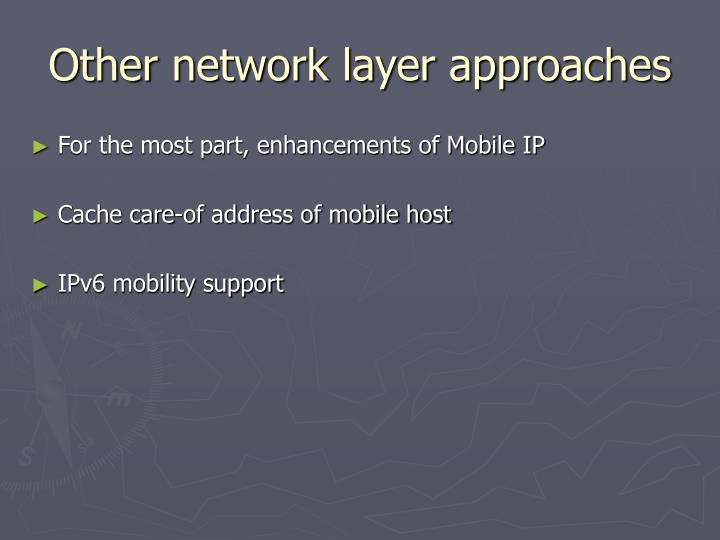 Other network layer approaches