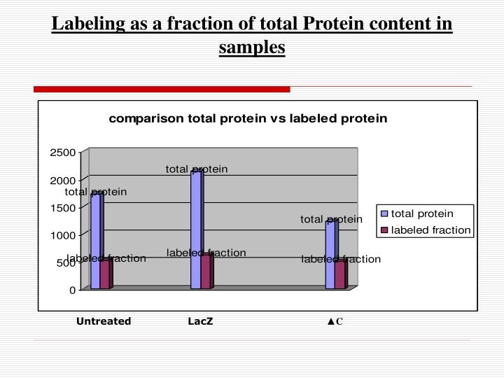 Labeling as a fraction of total Protein content in samples