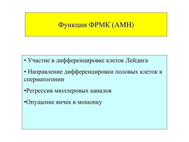 Функции ФРМК (