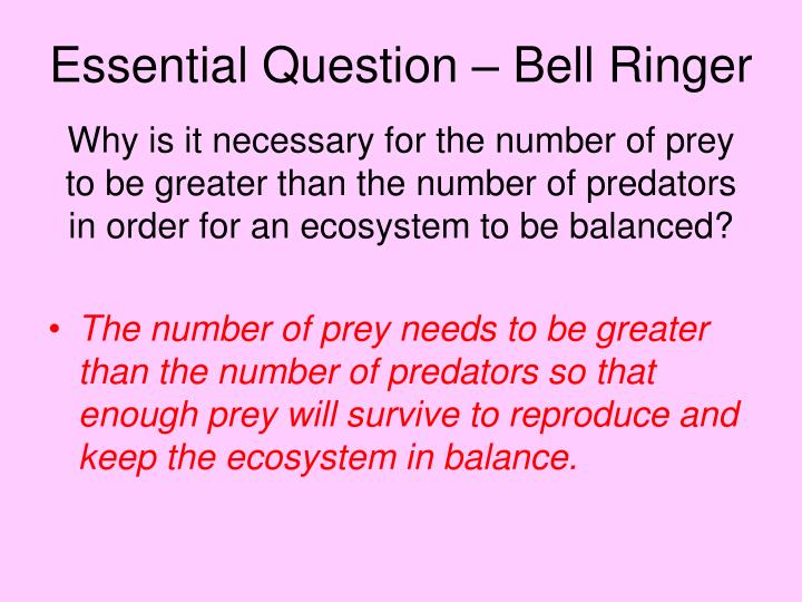Essential question bell ringer